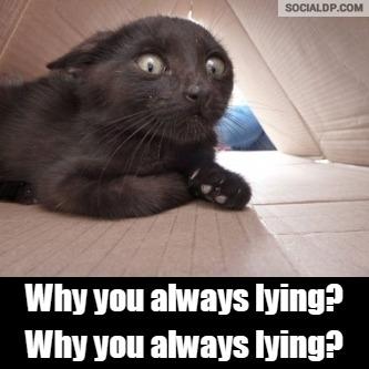 Why you always lying?